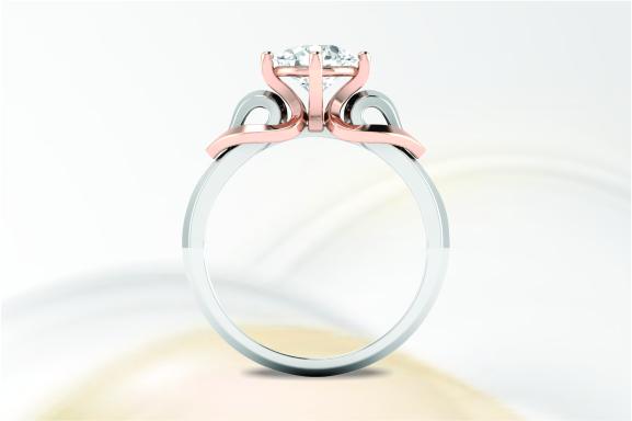 ngd-banner-ring-2